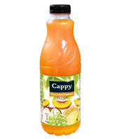 CAPPY MULTIWITAMINA 1L X 6