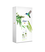 DOVE FW ECO3 SPECIAL (SG+BL) VARIANT 3 - MATCHA TEA SG 250ML + BL 250ML - CLOSED BOX WITH BIRDS DESIGN