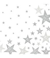 DUNI SERWETKI 3-WARSTWOWE 33X33 CM SHINING STAR WHITE 20 SZT