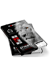 ETYKIETA A4 190X61MM 100 ARKUSZY