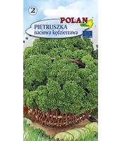 PIETRUSZKA MOSS CURLED POLAN