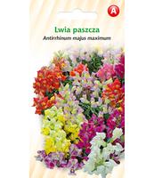 LWIA PASZCZA TOR