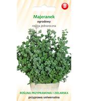 MAJERANEK OGRODOWY TOR